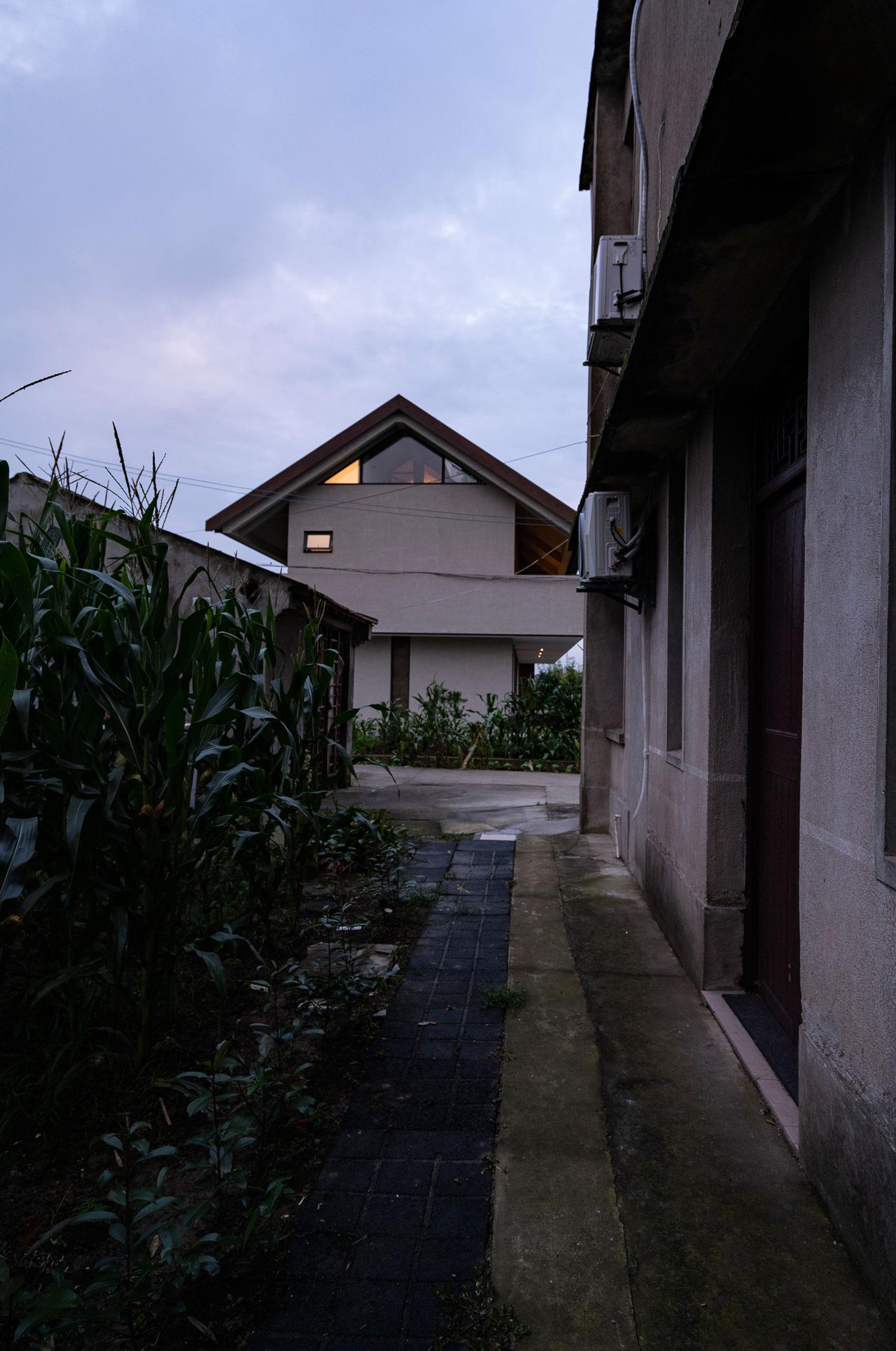 DSC01872-d.jpg